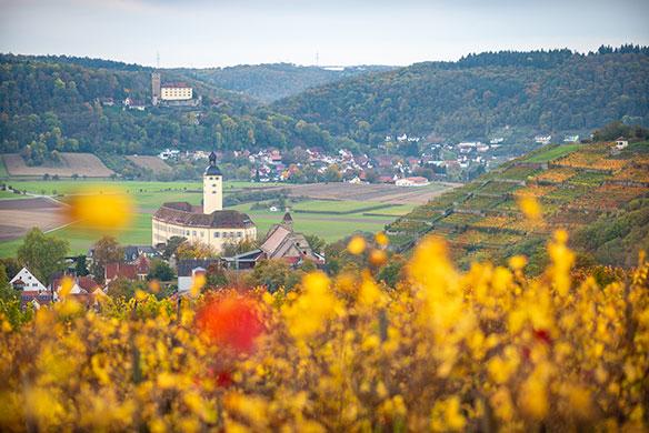 Schloss Horneck Burg Guttenberg